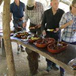 Mittagsbuffett im Urwald mit Menschen
