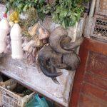 Widderhörner beim Markthändler